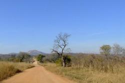 Pretoriuskop